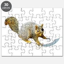 Pirate Squirrel Puzzle