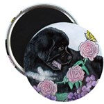 Newfoundland Puppy Magnet