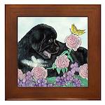 Newfoundland Puppy Framed Tile