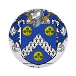 Waters (Limerick)-Irish-9.jpg Ornament (Round)