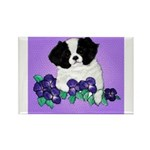 Japanese Chin Pup Rectangle Magnet