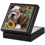 BULLDOG SMILES Keepsake Box