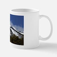 Mug -Sierra Blanca #4-21
