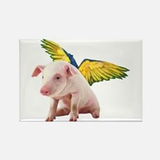 Pigs Fly Rectangle Magnet