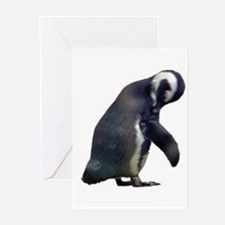 african penguin Greeting Cards (Pk of 10)