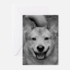 Cute Puppy! Greeting Cards (Pk of 10)