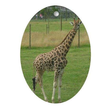 Giraffe Oval Ornament