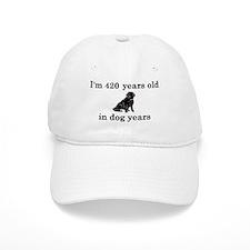 60 birthday dog years lab 2 Baseball Baseball Cap