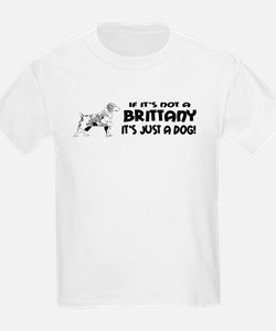 If It's Not A Brittany Kids T-Shirt