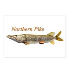 Northern Pike Postcards (Package of 8)