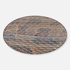 Water Snake Skin Decal