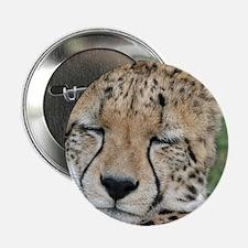 """cheetah 005 2.25"""" Button"""