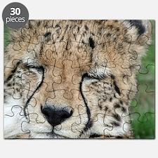 cheetah 005 Puzzle
