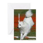 Eskie Greeting Cards (Pk of 10)
