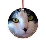Cat Face Ornament (Round)