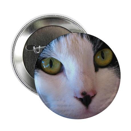 Cat Face Button
