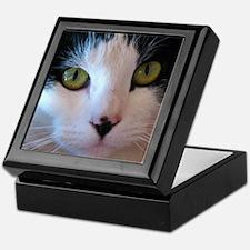 Cat Face Keepsake Box