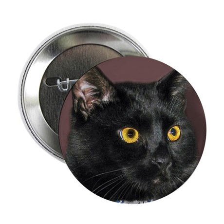 "Black Cat wYellowEyes 2.25"" Button (10 pack)"