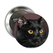 Black Cat wYellowEyes Button