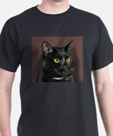 Black Cat wYellowEyes T-Shirt