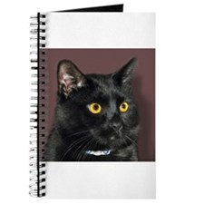 Black Cat wYellowEyes Journal