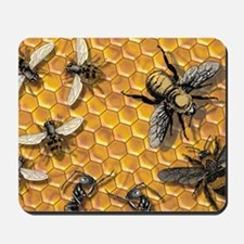 bees and honeycomb illustration Mousepad