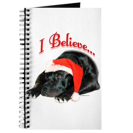 Cane I Believe Journal