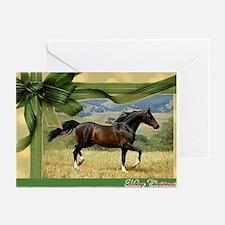 Morgan Horse Christmas Greeting Cards (Pk of 20)
