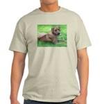 Ridgeback Ash Grey T-Shirt