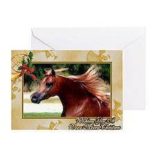 Arabian Horse Christmas Greeting Card