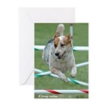 Agility Greeting Cards (Pk of 10)