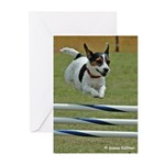 Jumping Jack Greeting Cards (Pk of 10)