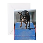 Racin' Min Pin Greeting Cards (Pk of 10)
