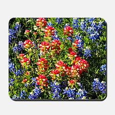Texas bluebonnets Mousepad