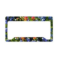 Texas bluebonnets License Plate Holder