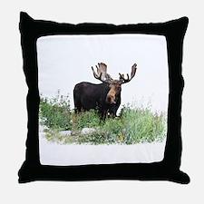 Moose Eating Flowers Throw Pillow