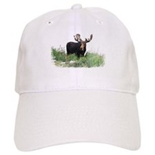 Moose Eating Flowers Baseball Cap