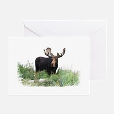 Moose Eating Flowers Greeting Card
