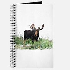 Moose Eating Flowers Journal