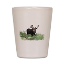 Moose Eating Flowers Shot Glass