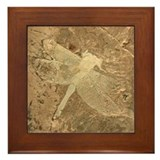 Dragonfly Framed Tiles