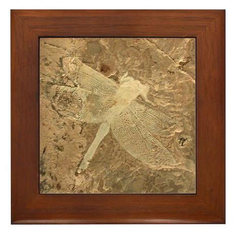 Dragonfly Fossil Stone Art Framed Tile