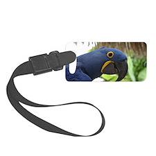 Hyacinth Macaw Luggage Tag