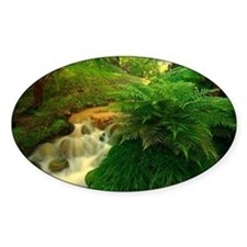 Stream in the forest Decal