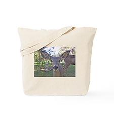 Ram and Eva Tote Bag