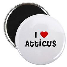 I * Atticus Magnet