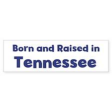 Raised in Tennessee Bumper Car Sticker