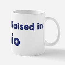 Raised in Ohio Mug