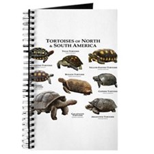 Tortoises of North & South America Journal