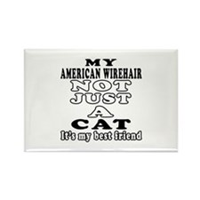 American Wirehair Cat Designs Rectangle Magnet